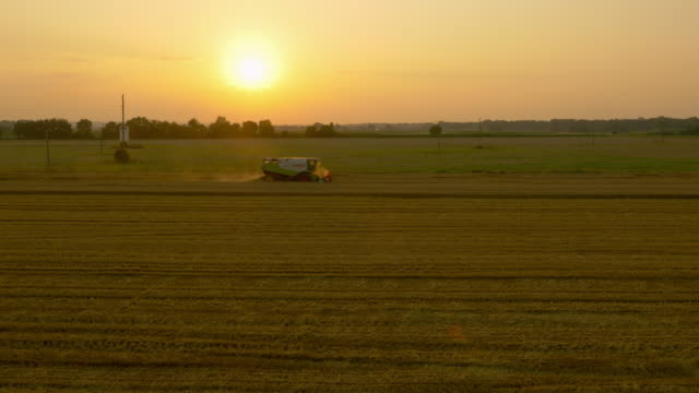 AERIAL Combine harvester harvesting the wheat at sunset