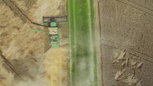 Combine Harvester Harvesting Wheat Flyover