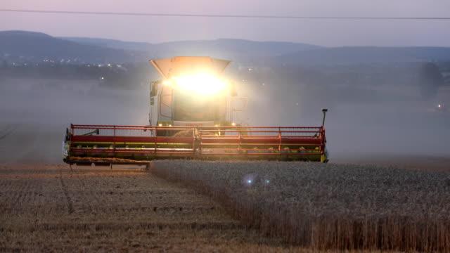 combine harvester is harvesting a wheat field in midsummer in germany at sunset. due to the drought, the harvest seems to be bad for german farmers... - dammstorm storm bildbanksvideor och videomaterial från bakom kulisserna