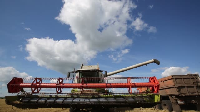 A combine harvester manufactured by Claas KGaA operates in a field of wheat during the summer harvest at the OAO Krasny Vostok Agro agricultural...