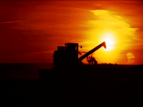 combine harvester reaps wheat at sunset - 1996 stock videos and b-roll footage
