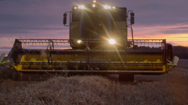 Combine harvester riding during sunset. Pink, moody sky