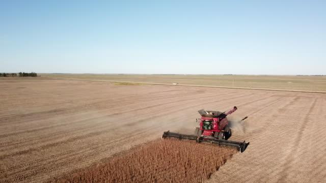 vídeos de stock e filmes b-roll de combine harvester track back - dakota do sul
