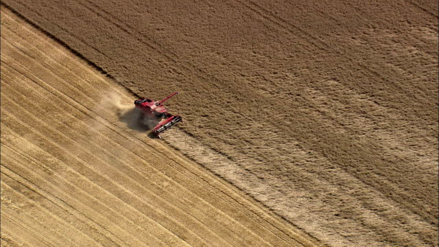 combine harvester - agricultural activity stock videos & royalty-free footage