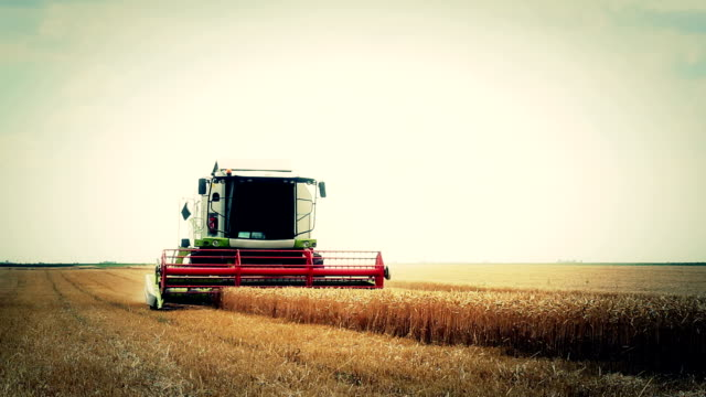 stockvideo's en b-roll-footage met combine harvester - tractor