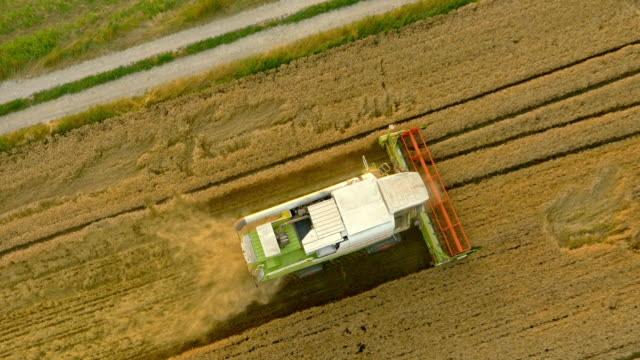 AERIAL Combine harvesters harvesting the wheat