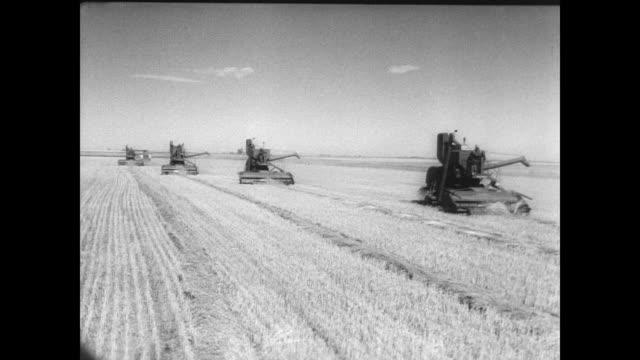 vídeos y material grabado en eventos de stock de combine harvesters in a row harvesting field / cu harvester gathering the wheat / cu grass blowing in the breeze - potasio