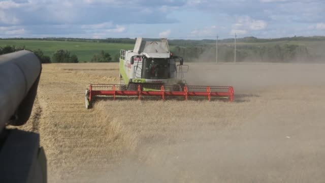 Combine harvesters manufactured by Claas KGaA pass through a field of wheat during the summer harvest at the OAO Krasny Vostok Agro agricultural...