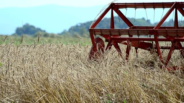 stockvideo's en b-roll-footage met combine harvesters on wheat field - vier dingen