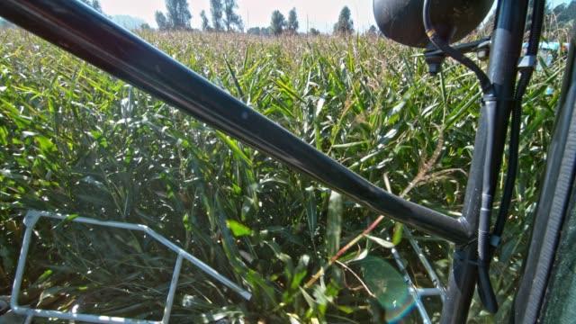 slo mo は、トウモロコシの茎の収穫を組み合わせる - コンバイン点の映像素材/bロール