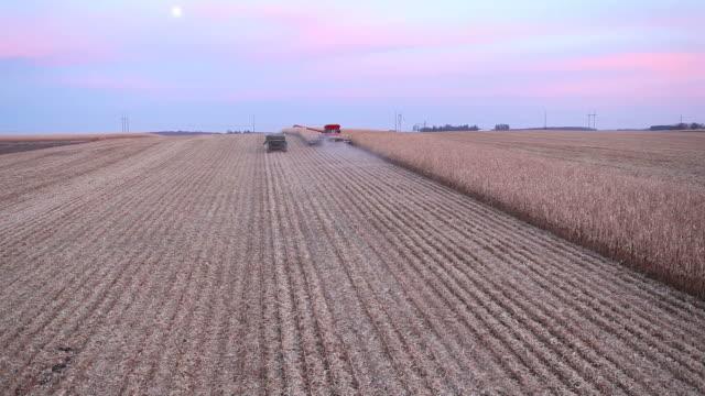 Kombinieren Sie ernten Herbst Cornfield Luftbild in der Abenddämmerung
