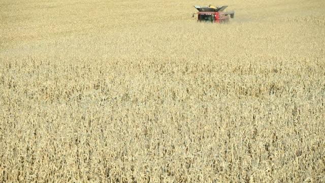 combine harvesting fall cornfield aerial - grain cart stock videos & royalty-free footage