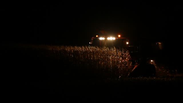 combine harvesting fall cornfield at night - grain cart stock videos & royalty-free footage