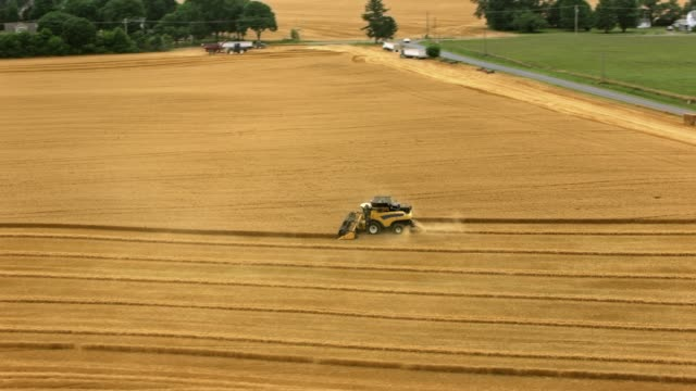aerial combine harvesting grain crops - agricultural equipment stock videos & royalty-free footage