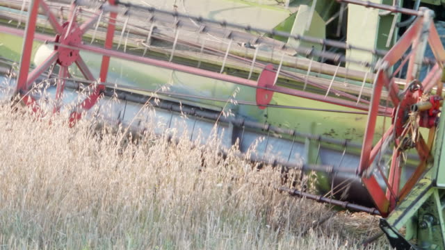 combine harvesting oat - harvesting stock videos and b-roll footage