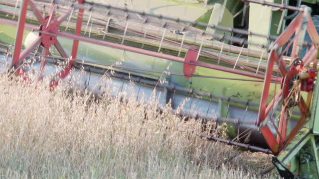 Combine Harvesting oat