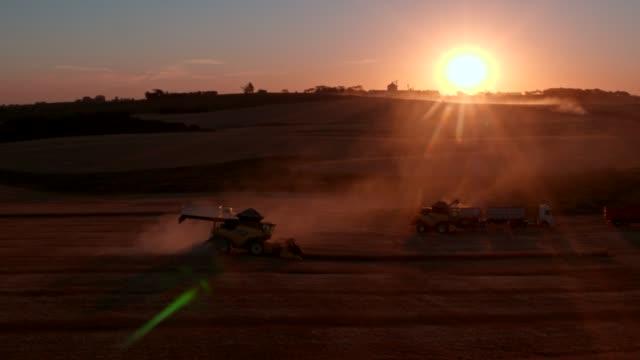 vídeos de stock, filmes e b-roll de trigo de colheita da liga - cena rural