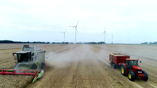 combine machine harvesting field - harvesting stock videos and b-roll footage