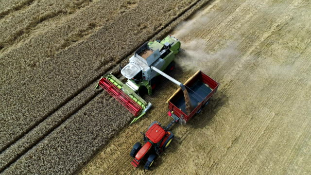 Combine machine harvesting field