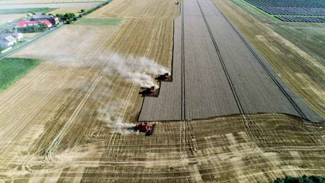 combine machines harvesting field. cloud of dust - three objects stock videos & royalty-free footage