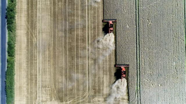 Kombinera maskiner skörd fältet