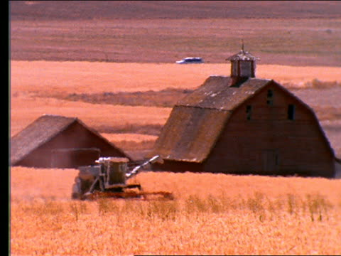 combine moving thru wheat field with barns in background - cinematografi bildbanksvideor och videomaterial från bakom kulisserna