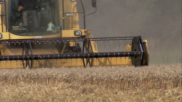 a combine reaps a field in lincolnshire, england. available in hd. - lincolnshire stock videos & royalty-free footage