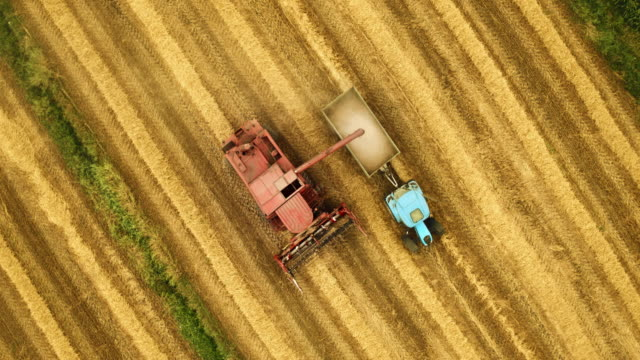 AERIAL Combine transferring the wheat grains into a tractor trailer in the field after harvest