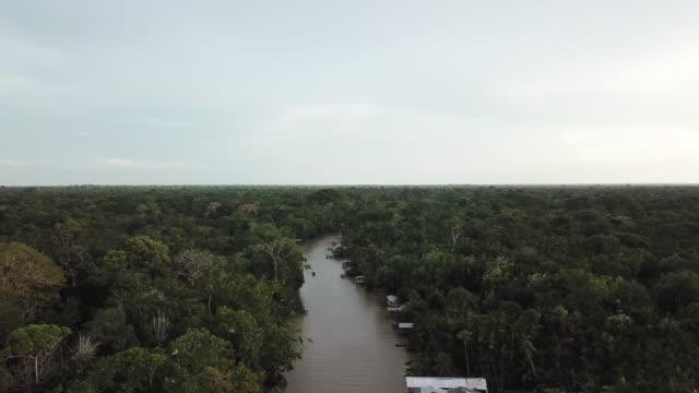 vídeos de stock, filmes e b-roll de ilha do combu (combu island), near belém, para state, brazil - ilha
