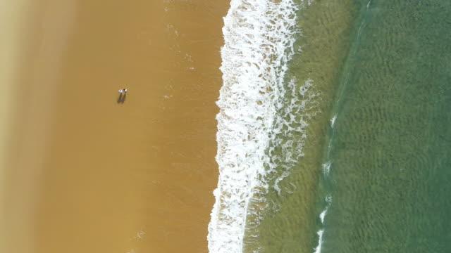 新鮮な空気のために来て、心の安らぎで去る - 波打ち際点の映像素材/bロール