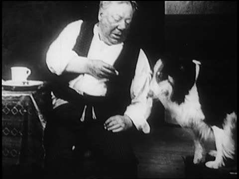 stockvideo's en b-roll-footage met b/w 1909 comedian john bunny feeding collie from table + laughing / short film - 1900 1909