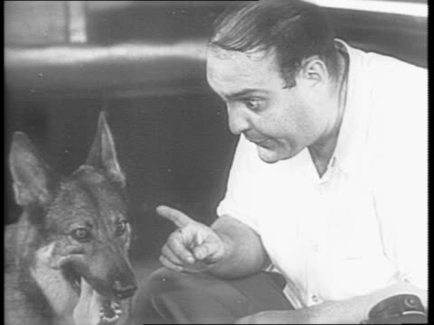 comedian samuel joel 'zero' mostel, continues a comedic routine trying to train his dog / mostel talks to dog / mostel speaks to the viewer while dog... - rassehund stock-videos und b-roll-filmmaterial