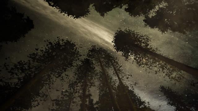 空の彗星 - 彗星点の映像素材/bロール