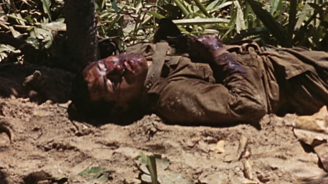 coming ashore through shallow water, dead japanese soldiers lying where they fell, marines standing on the beach, marine throwing grenade, and... - pacific war点の映像素材/bロール