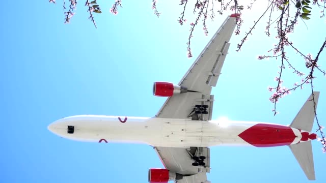 SLO MO Commercial airplane flyover