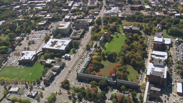 AERIAL Commercial and business district with fall trees surrounding lawns in park / Springfield, Massachusetts, United States