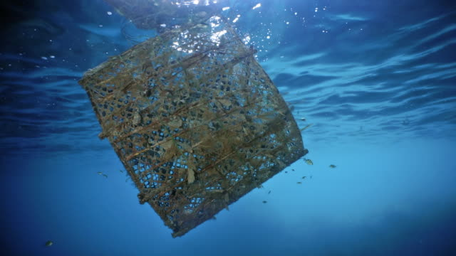 commercial fish trap ghost net pollution discarded in the ocean garbage patch - rete da pesca commerciale video stock e b–roll