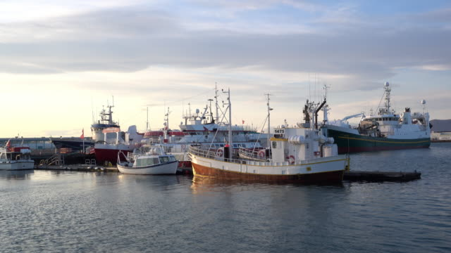 commercial fishing boats in reykjavik harbour - fishing industry stock videos & royalty-free footage