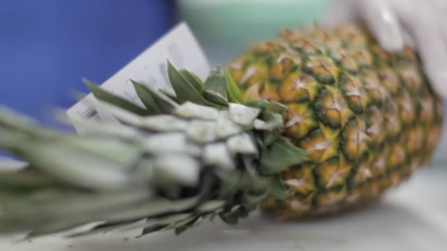 commercial kitchen food preparation -slicing pineapple - pineapple stock videos & royalty-free footage