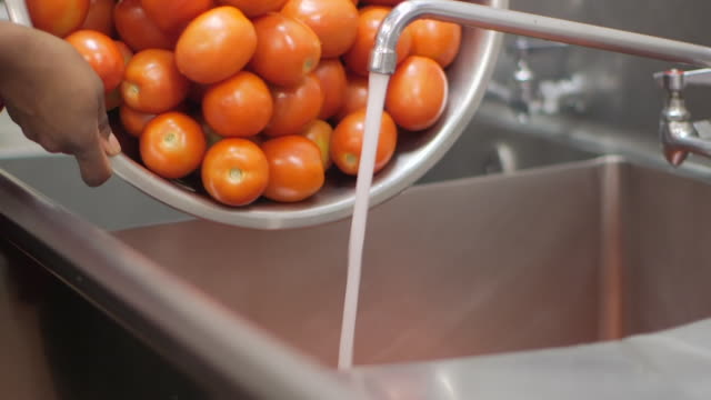 commercial kitchen food preparation - washing tomatoes - vegetarian food stock videos & royalty-free footage
