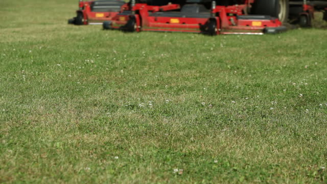 commercial lawn mower cutting grass - low angle view - lawn stock videos & royalty-free footage