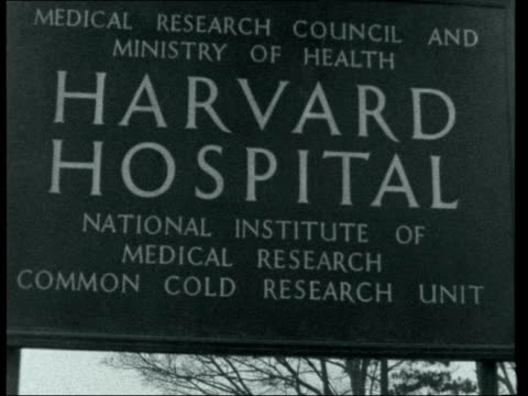 common cold research unit; england: wiltshire: salisbury: harvard hospital: int 2 shot: dr bynoe and dixon dr bynoe interview sof. - i'm convinced... - philosophy stock videos & royalty-free footage