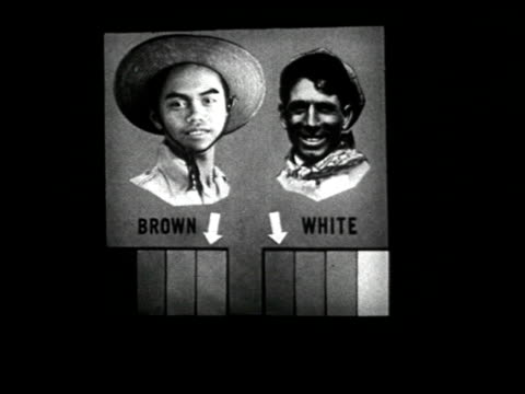 stockvideo's en b-roll-footage met common fallacies about group differences - 4 of 14 - racisme