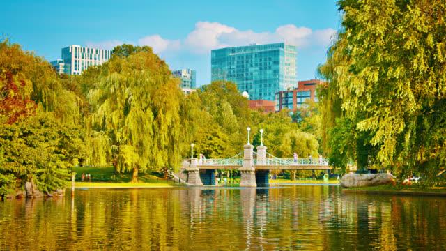 common park. boston. nature. corporate building skyline. tree. pond. lake - massachusetts stock videos & royalty-free footage