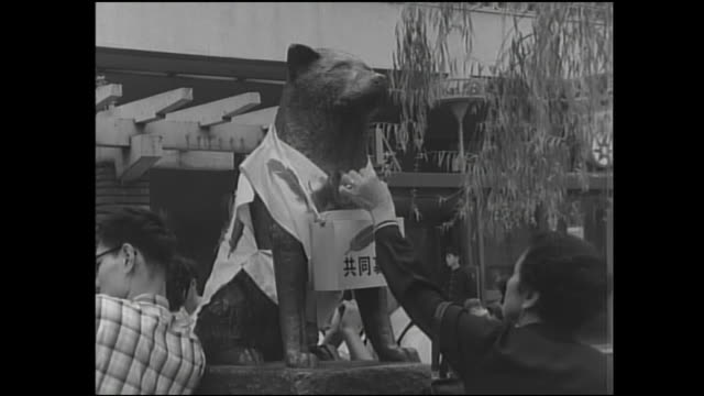 stockvideo's en b-roll-footage met community chest  donors take a feather from a collection box on the hachiko statue in tokyo's shibuya railway station. - shibuya shibuya station