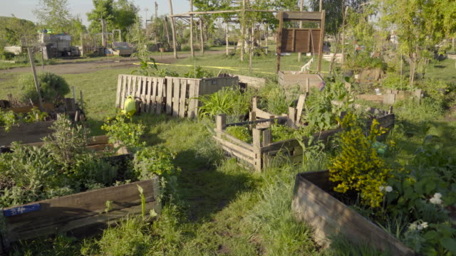 community gardens in berlin - community garden stock videos & royalty-free footage
