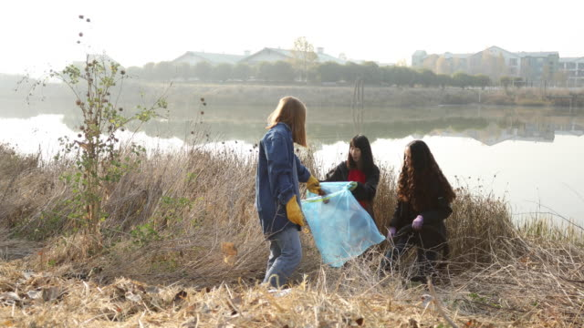 community river cleanup teamwork - environmental cleanup stock videos & royalty-free footage