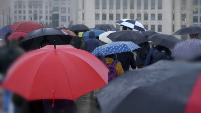 commuters with umbrellas in the rain. rear view. - busy morning stock videos & royalty-free footage