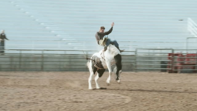 competition rodeo bareback riding - bucking bronco stock videos & royalty-free footage