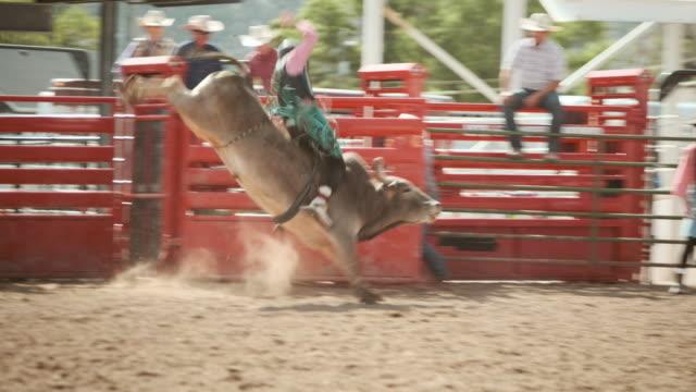 競争のロデオの雄牛乗り - 雄牛点の映像素材/bロール